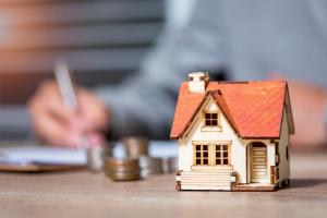 Self-Help Homeownership Opportunity Program