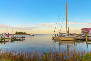 Chesapeake Bay Watershed Education and Training Program